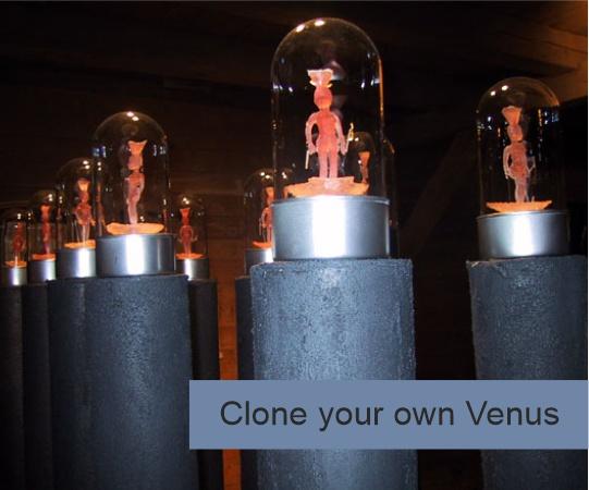 Clone your own Venus